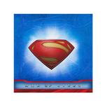 Superman Party Supplies - Plastic Table Cover