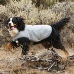 View Image 4 of Swamp Cooler Dog Cooling Vest by RuffWear - Graphite Gray