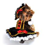 View Image 1 of Swashbuckler Pirate Girl Halloween Dog Costume