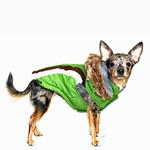 View Image 4 of Swiss Alpine Ski Dog Vest by Hip Doggie - Green