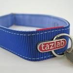 View Image 3 of Tazlab Safe-T-Stretch Dog Collar - New River Blue