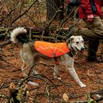 View Image 1 of Track Dog Jacket by RuffWear - Blaze Orange