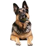 View Image 2 of Tuffy Rugged Rubber Dog Toys - Grenade