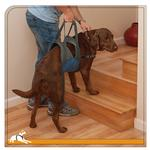 View Image 2 of Up and About Dog Lifter by Kurgo