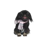View Image 1 of Urban Stripe Dog Scarf by Dogo - Pink