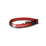 View Image 1 of Visiglo Nylon Dog Collar with White LEDs - Red