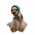 View Image 1 of Yuppie Dog Hat by Puppia - Aqua