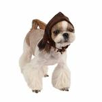 View Image 1 of Yuppie Dog Hat by Puppia - Brown