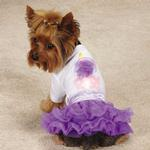 View Image 2 of Zack & Zoey Chiffon Cupcake Dog T-Shirt and Skirt Set