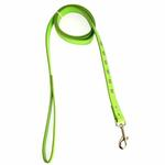 View Image 1 of Zack & Zoey Flutter Bugs Charm Dog Leash - Lady Bug