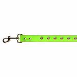 View Image 4 of Zack & Zoey Flutter Bugs Charm Dog Leash - Lady Bug