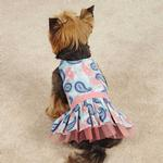 View Image 2 of Fresh Water Paisley Dog Dress