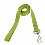View Image 1 of Zack and Zoey Nylon Dog Leash - Parrot Green