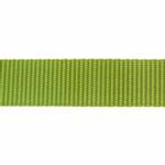 View Image 2 of Zack and Zoey Nylon Dog Leash - Parrot Green