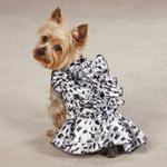 View Image 1 of Zack & Zoey Snow Leopard Satin Dog Dress