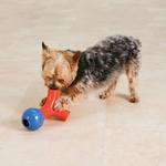 View Image 3 of Zanies Puzzle Station Jack & Ball Dog Toy