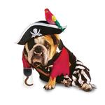 View Image 1 of Zelda Pirate Halloween Dog Costume
