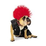 View Image 1 of Punk Rock Halloween Dog Costume by Zelda
