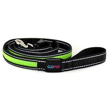 GLOPUP LED Dog Leash - Green