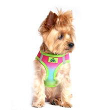 American River Choke-Free Dog Harness - Rainbow Ombre