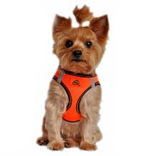 American River Top Stitch Dog Harness - Iridescent Orange