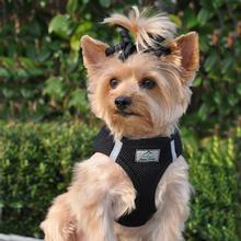 American River Ultra Choke-Free Mesh Dog Harness by Doggie Design - Black