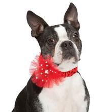 Aria Starburst Dog Scrunchy - Red
