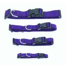 Barking Basics Dog Collar - Purple