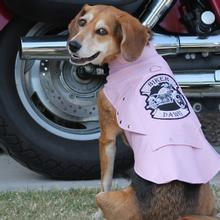 Biker Dawg Motorcycle Dog Jacket by Doggie Design - Pink