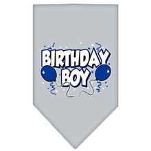 Birthday Boy Screen Print Dog Bandana - Gray