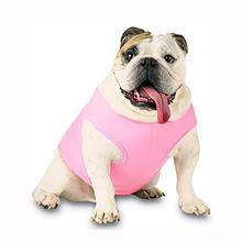 Blank Ribbed Dog Tank - Pink