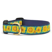 Bright Sunflower Dog Collar by Up Country