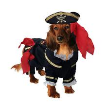 Buccaneer Pirate Dog Costume