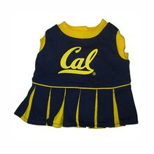 California Golden Bears Cheerleader Dog Dress