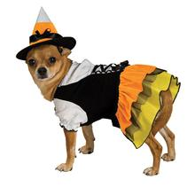 Candy Corn Witch Dog Halloween Costume