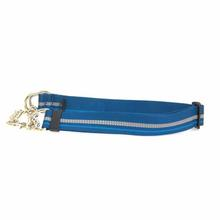 Chain Reaction Dog Collar by RuffWear - Metolius Blue