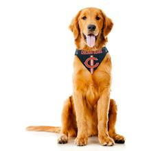 Chicago Bears Tie On Dog Bandana