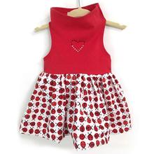 Daisy and Lucy Ladybug Dog Dress