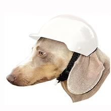 Dog Bike Helmet - White