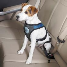 Dog is Good Car Dog Harness - Blue