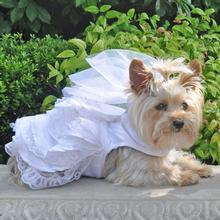 Dog Wedding Harness Dress Set