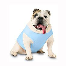 Blank Ribbed Dog Tank - Light Blue