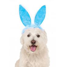 Easter Bunny Ears Dog Costume Headpiece - Blue