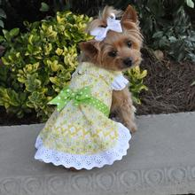 Emily Yellow Floral and Lace Dress with matching Leash