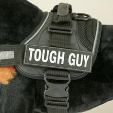 EzyDog Custom Side Patches for Convert Harness- Tough Guy