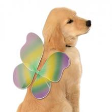 Fairy Wings Dog Costume - Mardi Gras