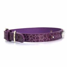 Faux Crocodile Two Tiered Dog Collar with 18MM Letter Strap - Purple