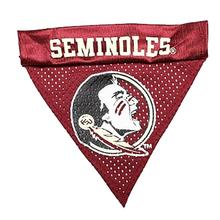 Florida State Dog Bandana Collar Slider