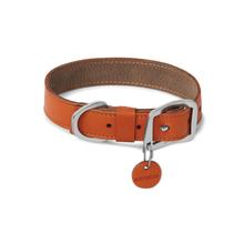 Frisco Timberline Dog Collar by RuffWear - Canyonlands Orange