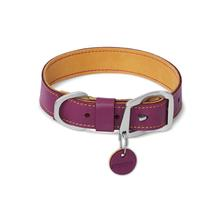 Frisco Timberline Dog Collar by RuffWear - Wild Plum Purple